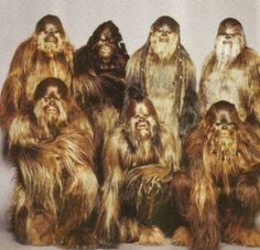 In the original Star Wars trilogy, it seems as if Chewbacca can understand his human acquintance, Han Solo. Chewbacca, Fun Movie Facts, Fun Facts, Random Facts, Bd Star Wars, Star Trek, Starwars, Dark Vader, Tony Ramos