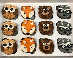Woodland Animal Cupcakes – Classy Girl Cupcakes Best Picture For unisex Baby Shower Themes For Your Bear Cupcakes, Cupcakes For Boys, Animal Cupcakes, Girl Cupcakes, Themed Cupcakes, Cupcake Cakes, Baby Shower Cupcakes For Boy, 1st Birthday Cupcakes, Cupcakes Design