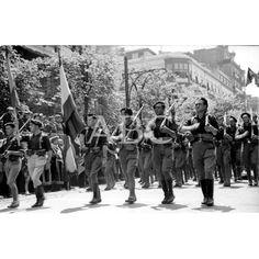 1936 LA BANDERA DE SAGARDIA DESFILANDO ANTE LAS AUTORIDADES DE SAN SEBASTIÁN: Descarga y compra fotografías históricas en | abcfoto.abc.es