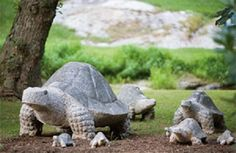 Stone Turtle/Tortoise hand-crafted from granite in varying sizes. Take  a look at http://www.stonestatuestore.com/natural-stone-granite-animals