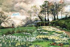 Ellen Willmott's Garden by Alfred Parsons, watercolor