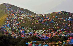 Camping Festival en China
