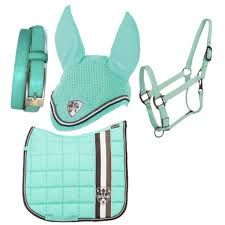 Image result for mint green horses
