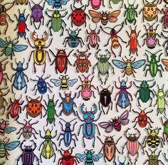 besouros jardim secreto - Pesquisa Google