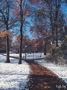 🇺🇸 Paths through snow (Kent State University, Ohio) by Kayla Ivey on cr. Dirt Road Anthem, First Day Of Winter, Winter Road, Snow Photography, Ohio Usa, Winter White, Winter Season, My Images, Winter Wonderland