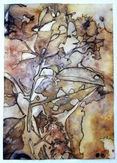 Eco printed paper and ink drawing by Cherie Livni