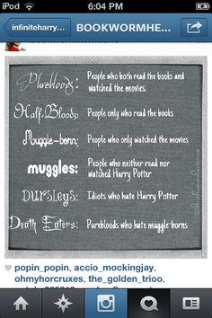 I'm a Half-blood Death Eater, I guess. Snape! :P