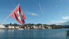 Przy władzy pozostaje Szwajcarska Partia Ludowa (niem. SVP, fr. UDC), która zyskała kolejne mandaty w porównaniu do ostatnich wyborów. Większe poparcie mają wśród obywateli także liberałowie z FDP (fr. PLR). Szwajcaria staje się coraz bardziej prawicowa.