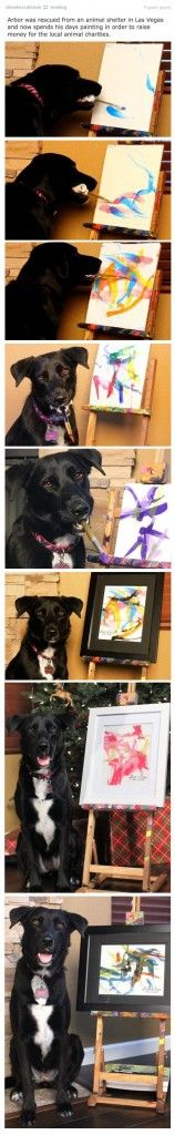 Arbor is trying very hard to raise funds for a Las Vegas animal shelter by selling his pictures - yes thats right he's an artist