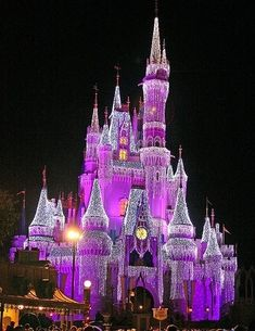 Disney world ... Cindrella'S castle in PURPLE