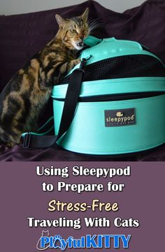 My cats are ready for our road trip! Want to know how @Sleepypod is helping to make their travel stress-free? #sponsored