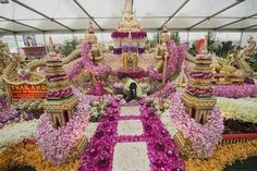 RHS Chelsea Flower Show - celebrities and amazing displays