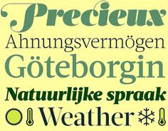 Acta Complete http://www.fontshop.com/fonts/downloads/dstype/acta_complete_ot/ot_ps &http://www.fontshop.com/fonts/downloads/dstype/acta_complete_web/web_tt Web sind Teil eines gut ausgebauten Schriftsystems für den anspruchsvollen Satz von Zeitungen und Zeitschriften. Stilistisch eine »gut gelaunte« Bodoni, mit feinen Serifen, viel Schwung und Kontrasten, die mit zunehmender der Strichstärke ansteigen.