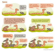 """Venomous"" vs ""Poisonous,"" Explained With Adorable Talking Animals - Rosemary Mosco's webcomic"