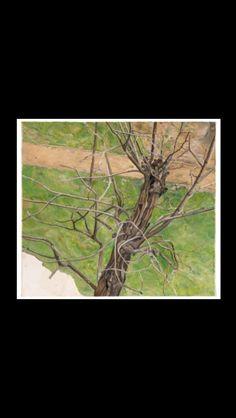 """Lucian Freud - """" Acacia """", 1975 - Oil on canvas - 45,8 x 50,9 cm"""