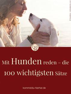 Talking to dogs - the 100 most important sentences - Erziehung - Katzen, Hunde, Tiere Dog Hacks, Old Dogs, Dog Behavior, Dog Care, Dog Grooming, Dog Owners, Dog Treats, Animals And Pets, Dog Training