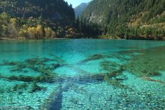 not the first thing to come to mind when i think of china. jiuzhaigou, sichuan.