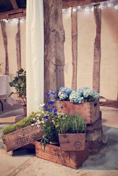 Old crates turned planters .... I wouldn't want to risk destroying antique crates, but  I think these could be an easy diy project with the right stain and stenciling technique.