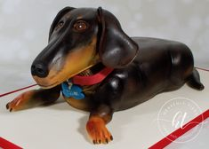We produces delicious handmade and beautifully decorated cakes and confections for weddings, celebrations and events. Dachshund Cake, Handmade Wedding, Celebration Cakes, Celebrity Weddings, Heavenly, Cake Decorating, Celebrities, Animals, Shower Cakes