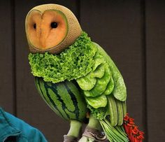 outstanding! the face looks JUST like a barn owl