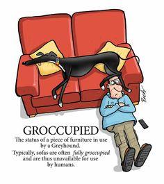 Groccupied, by Richard Skipworth