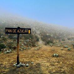 HikingWaraira: Pico Pan de Azucar, Mérida . Venezuela #senderismo