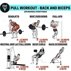 biceps workout Create a sculpted back and build your biceps with this amazing workout. This article is going to take you through one of many beneficial back and biceps workouts. This mu Pull Day Workout, Back And Bicep Workout, Push Workout, Gym Workout Chart, Gym Workout Tips, Back And Biceps, Fun Workouts, Chest And Tricep Workout, Chest Workout For Men