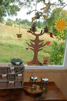 A homeschool room nature window!  Bug collections.  Hang feeders to attract birds, squirrels, racoons, etc and observe!  I am so in love with this!