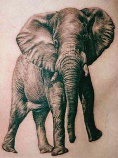 Elephant Tattoo Designs and Elephant Tattoo Meaning Elephant Head Tattoo, Elephant Tattoo Meaning, Elephant Tattoo Design, Elephant Design, Elephant Art, African Elephant, Leg Tattoos, Girl Tattoos, Sleeve Tattoos