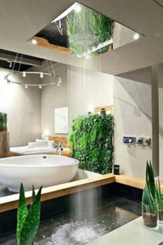 Geeky shower makes it feel like you are in a tropical rainforest.