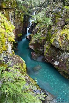 Avalanche Gorge, Glacier NP by Julie Lubick, via Flickr, Montana