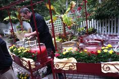 Food and Beverage Carts includes pink cherry lemonade, lemint iced tea, Corona coolers (with ginger, cucumber, lime and gin) and strawberry watermelon agua fresca from garden carts decorated with miniature potted roses by Tip of the Tonque