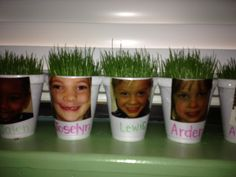 """Growing """"grass hair"""" for spring!!"""