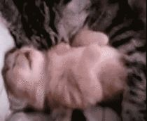 MRW I wake up in the middle of the night and notice my husband is having a bad dream