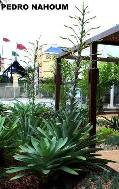 Gallocarioca, Rio de Janeiro BOTANICA POP 2009 Antonio Violante Arquitetura