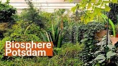 Biosphere Potsdam - YouTube