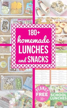 180+ Homemade back to school lunch and snacks. There is an idea and recipe in here for everybody!