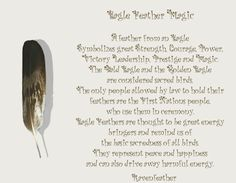 New Version of Eagle Feather Magic *Please check your local and federal guidelines for feather collection and possession! Feather Symbolism, Feather Meaning, Feather Art, Animal Spirit Guides, Your Spirit Animal, Wiccan Spells, Witchcraft, Spiritual Animal, Native American Wisdom