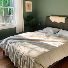 WEEKEND UPSTATE, dark green with a hint of blue paint color by Backdrop. Best Bedroom Paint Colors, Blue Paint Colors, Canvas Drop Cloths, Paint Samples, Painting Services, Interior Walls, Exterior Paint, Backdrops, Furniture