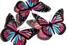 Hey, I found this really awesome Etsy listing at https://www.etsy.com/listing/47839841/5-x-3d-butterflies-kiddyarch-pink-and
