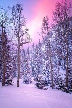 Vinterfärger...