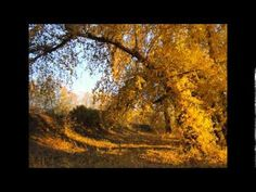 Abraham Hicks - Ready to attract a relationship Note to self play this one over and over and over its that good...