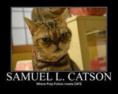 Le Chat de Samuel L. Jackson