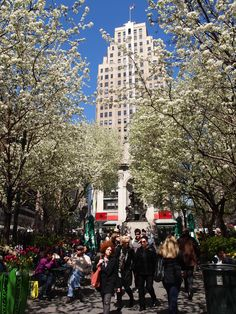 Herald in the springtime Herald Square, Spring In New York, Spring Time, New York City, Nyc, Beautiful, New York