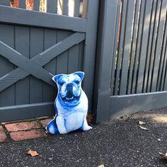 English Bulldog Blue size Blue Throw Pillows, Kids Pillows, Decorative Cushions, Take Me Home, Soft Hands, Big Boys, Bulldogs, All The Colors, Happy Shopping