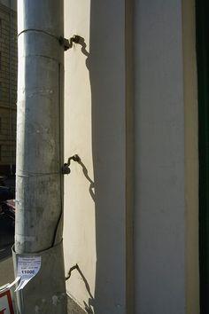 Информационные технологии. Осень. 2007. - Фотограф Александр Слюсарев