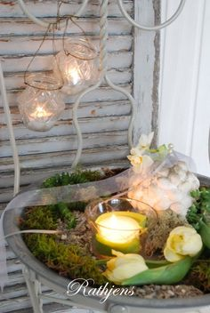 candle on moss