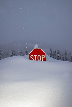York, Maine stop sign outside Foster's Clambakes and Catering. New England winters are the best!