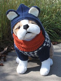 Dog Hoodie Knitting Pattern