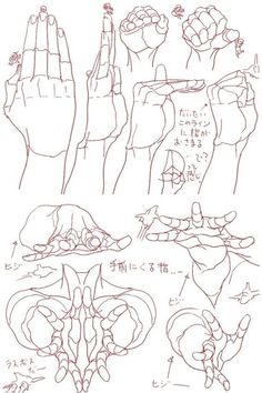 Hand Drawing Reference, Art Reference Poses, Anatomy Drawing, Anatomy Art, Drawing Skills, Drawing Techniques, Drawing Tips, Anime Hand, Main Manga